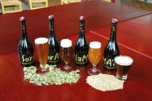 Birra Soralama