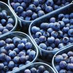 piccoli frutti (3)